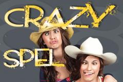crazy208820spel_1-1